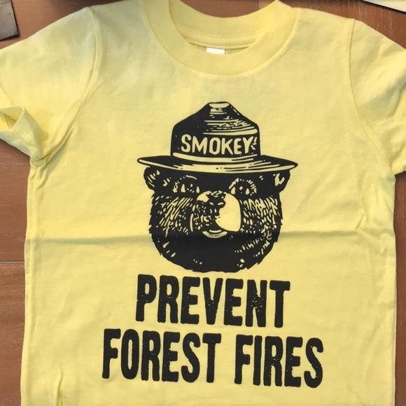 6f7e9c0e Smokey the Bear toddler shirt